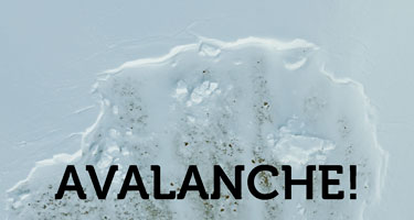 Avalanche! the Guide's Guide, Download Version